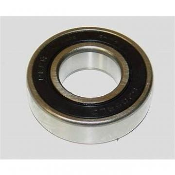 25 mm x 62 mm x 17 mm  Loyal NJ305 cylindrical roller bearings